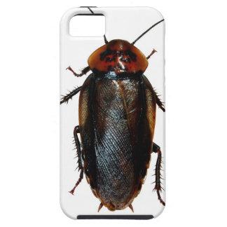 iPhoneHoesje van de kakkerlak Tough iPhone 5 Hoesje