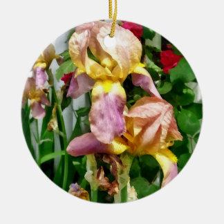 Irissen door de Omheining van het Piket Rond Keramisch Ornament