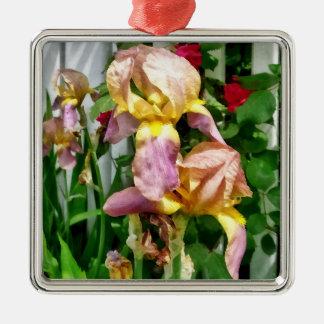 Irissen door de Omheining van het Piket Zilverkleurig Vierkant Ornament