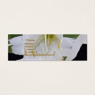 Ismene Spider Lily Profile Card Mini Visitekaartjes