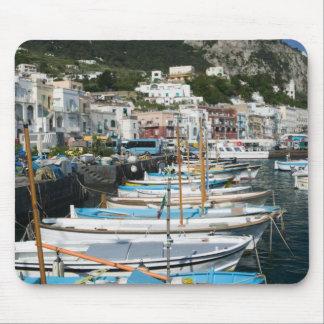 ITALIË, Campania, (Baai van Napels), CAPRI: Jachth Muismatten
