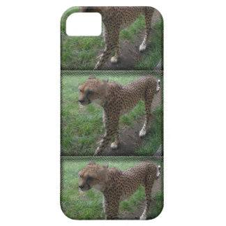 Jachtluipaard phonecover barely there iPhone 5 hoesje