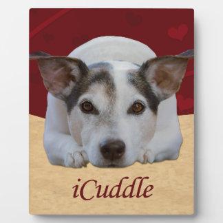 Jack Russel iCuddle Fotoplaat