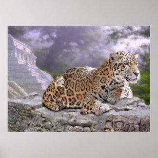 Jaguar en Mayan Tempel Poster