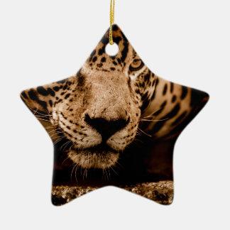 jaguar water het besluipen ogen keramisch ster ornament