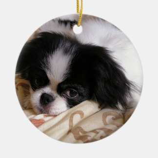 Japanese_chin puppy.png rond keramisch ornament