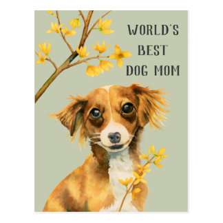 Jong en Forsythia | Mamma | van de Hond Moederdag Briefkaart