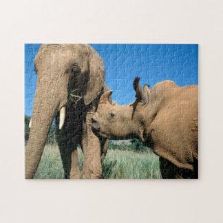 Jonge Witte Rinoceros Puzzel