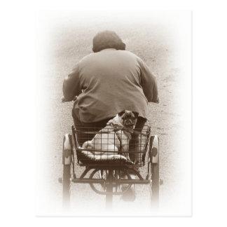 Jongen en Pug Hond die voor een Briefkaart van de