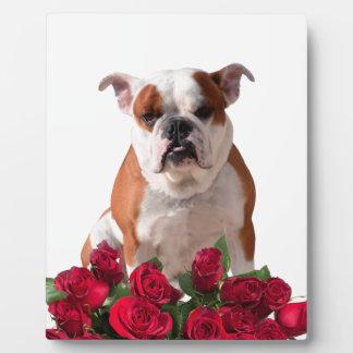 Jubileum van de Verjaardag van de Bloei van de Fotoplaten