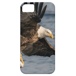 Kaal Eagle die Voedsel vangen Barely There iPhone 5 Hoesje