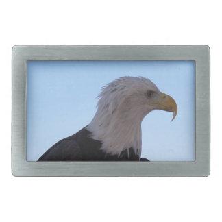 Kaal Eagle Gesp