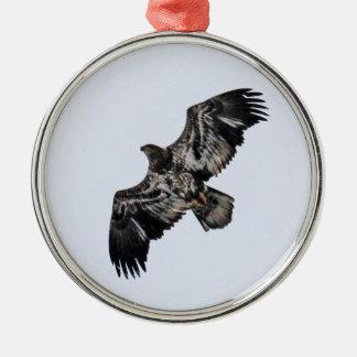 Kaal Eagle (Jeugd)