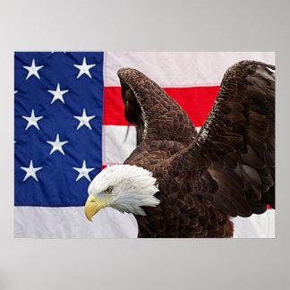 Kaal Eagle met de Amerikaanse Vlag Poster