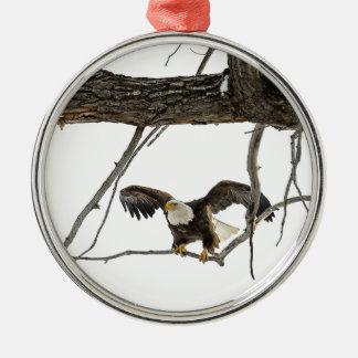 Kaal Eagle tijdens de vlucht Zilverkleurig Rond Ornament