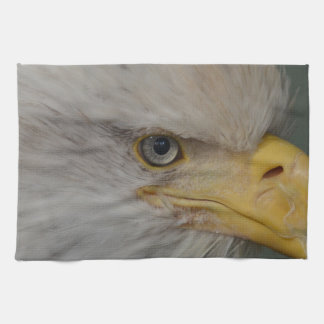Kaal Eagle van Alaska de V.S. Theedoek