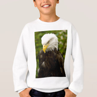 Kaal Eagle van Alaska Trui