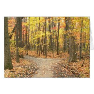 """Kaart, de """"Kleuren van de Herfst op Weg door Bos """" Briefkaarten 0"""