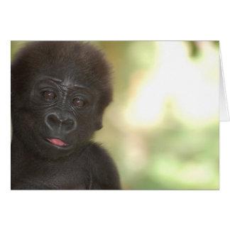 Kaart van de Nota van het Baby van de gorilla de