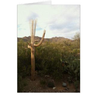 Kaart van de Nota van het Skelet van Saguaro de