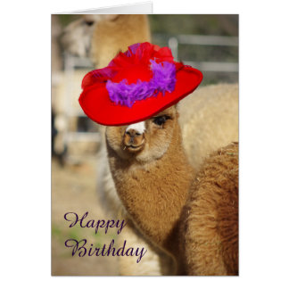 Kaarten van de Verjaardag van de alpaca de