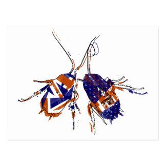 Kakkerlakken ameri-Brit Briefkaart