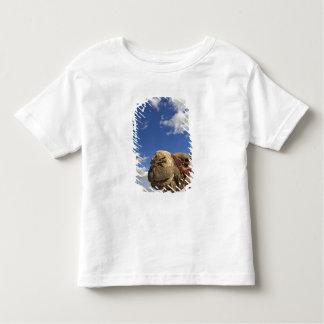 Kameel voor de piramides van Giza, Egypte, T-shirts