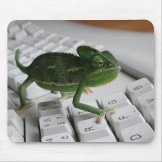 Kameleon op Toetsenbord Muismat