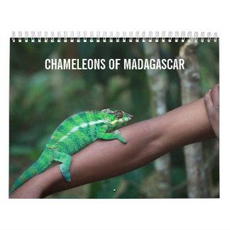 Kameleonen van de Kalender van Madagascar