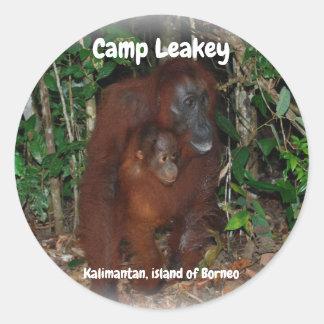 Kamp Leakey in Tanjung die Nationaal Park Borneo Ronde Sticker