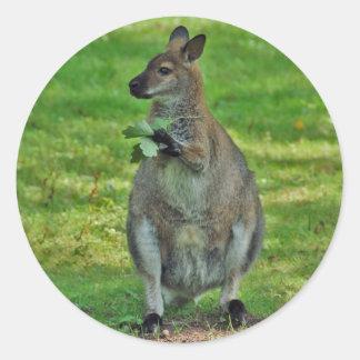 Kangoeroes met de stickers van eikenbladeren