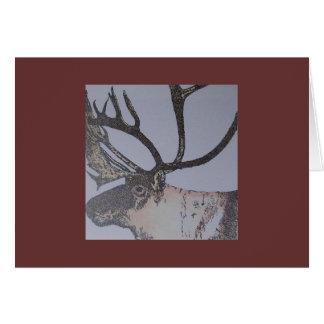 kariboe wenskaart
