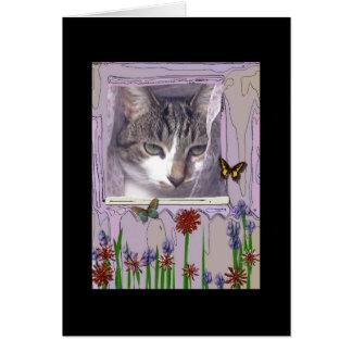 Kat bij Venster Briefkaarten 0
