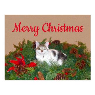 Kat in kroonKerstkaart Briefkaart