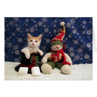Kat, Katje, Kerstmis, Redding, Foto Briefkaarten 0