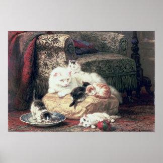 Kat met haar Katjes op een Kussen Poster