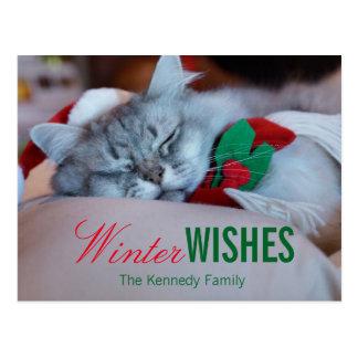 Kat met Kerstmispet en sjaal, het slapen kat Briefkaart