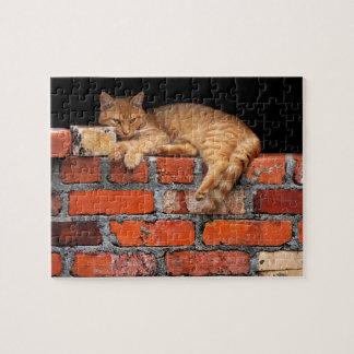 Kat op Bakstenen muur Puzzel