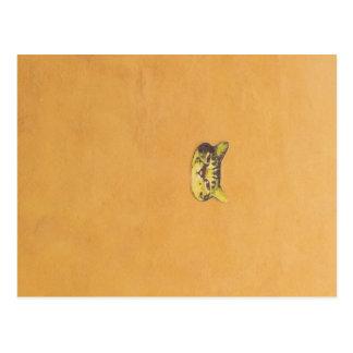 kat op een muur briefkaart