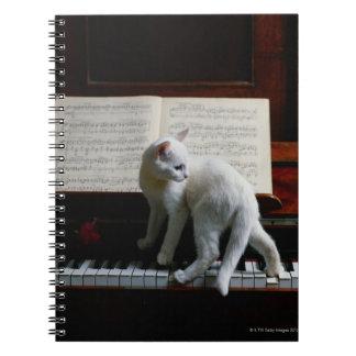 Kat op piano ringband notitie boek