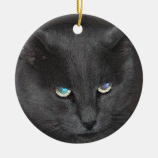 Kat van het Kat van de pret de Grijze met Rond Keramisch Ornament
