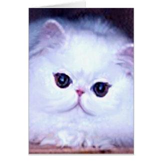 Kat van het Katje van de kat het Witte Perzische Briefkaarten 0