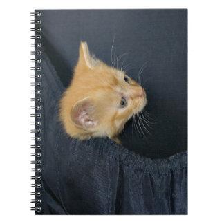 Katje in koffer ringband notitieboek