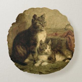 Katten, 1883 rond kussen