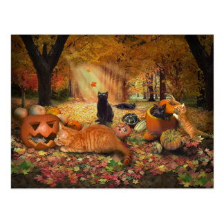 Katten in de Herfst Briefkaart