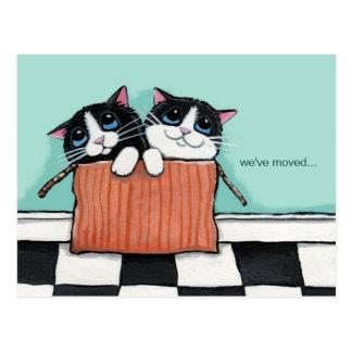 Katten in een Doos | van de Verpakking hebben wij Briefkaart