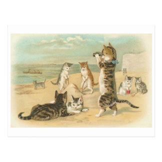 """""""Katten op het Strand"""" Wijnoogst Briefkaart"""