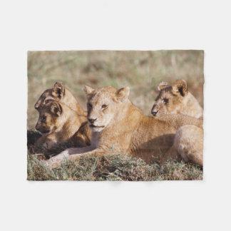 Kenia, Masai Mara, de Welpen van de Leeuw Fleece Deken