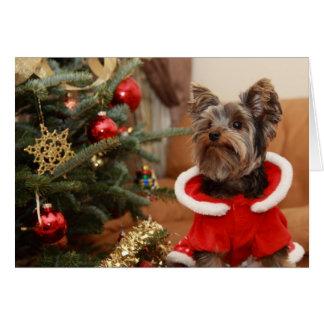 Kerstboom en Puppy Yorkie Kaart