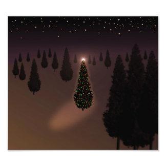 Kerstboom Fotoprints